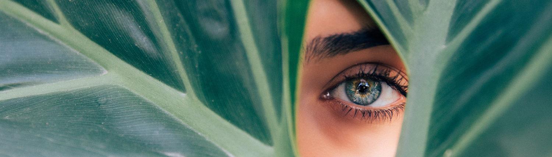 Kategorie Eyes